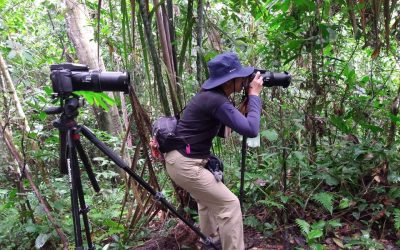 Love for nature in the Northern Peru Birding Route