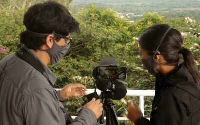Voices of the Forest: Birdwatching in Moyobamba
